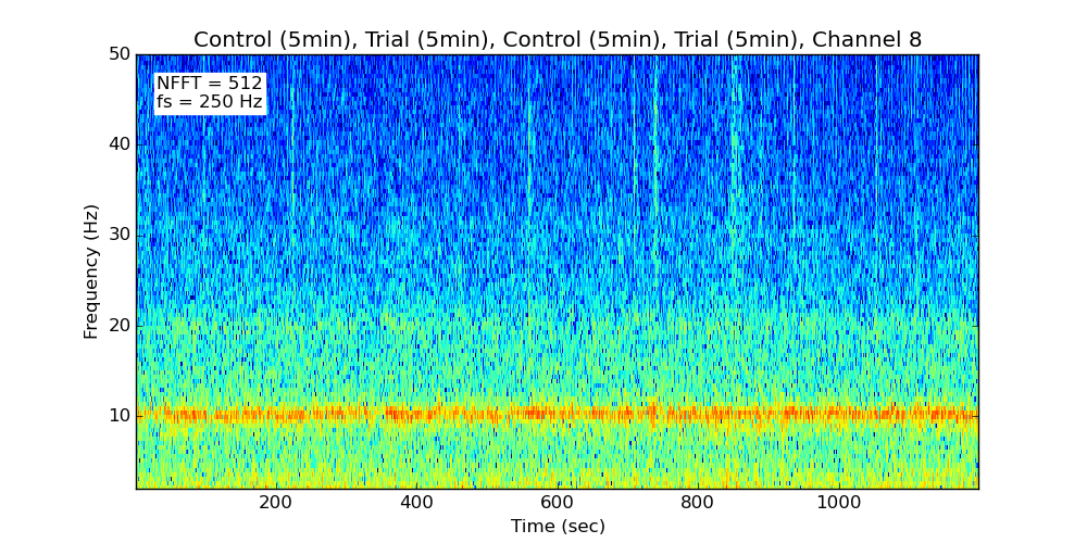 Spectrogram of all control and trial segments (Channel 8)